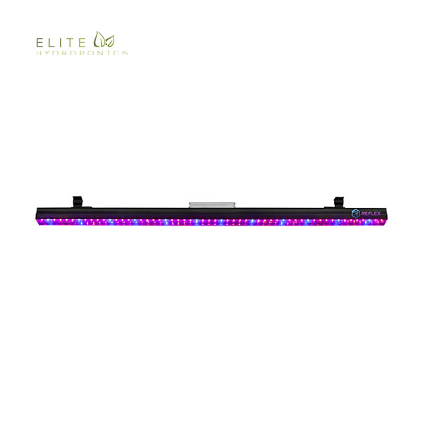 Reflex V Bar Light
